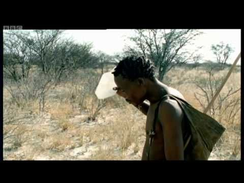Human Mammal, Human Hunter - Attenborough - Life of Mammals - BBC - YouTube