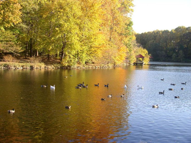Lake Elkhorn (Columbia, MD)