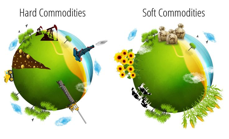 Learn the basics of Trading Commodities with NetoTrade