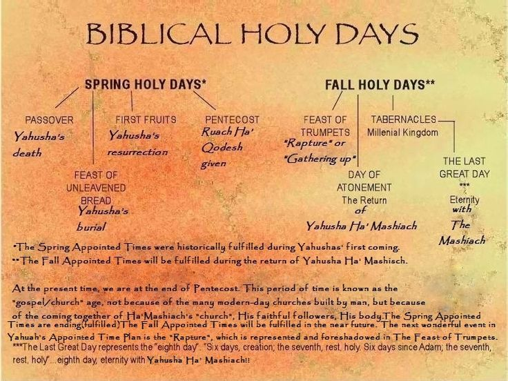 Bible Study: The Seven Feasts of Israel Leviticus 23:1-44