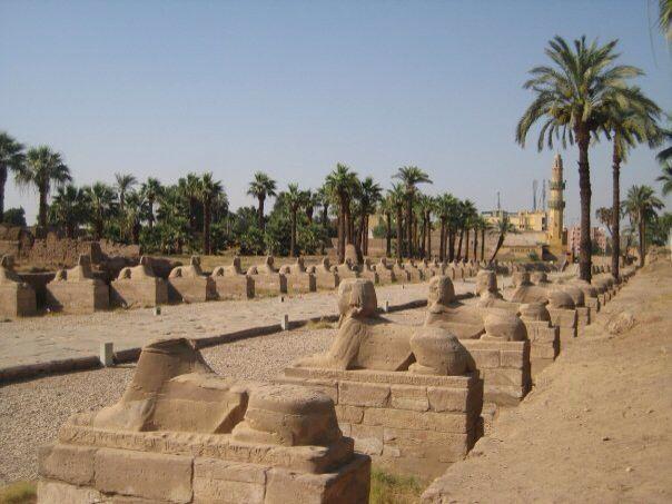 Sphinx ally, Luxor,Egypt