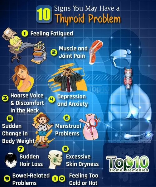 Prev post1 of 3Next The thyroid is a butterfly-shaped gland located in the center of the neck, which makes thyroid hormones. Although relatively small, it is considered the master gland of metabolism and plays a key role in the functioning of many important organs, including the heart, brain, liver, kidneys and skin. For your body's