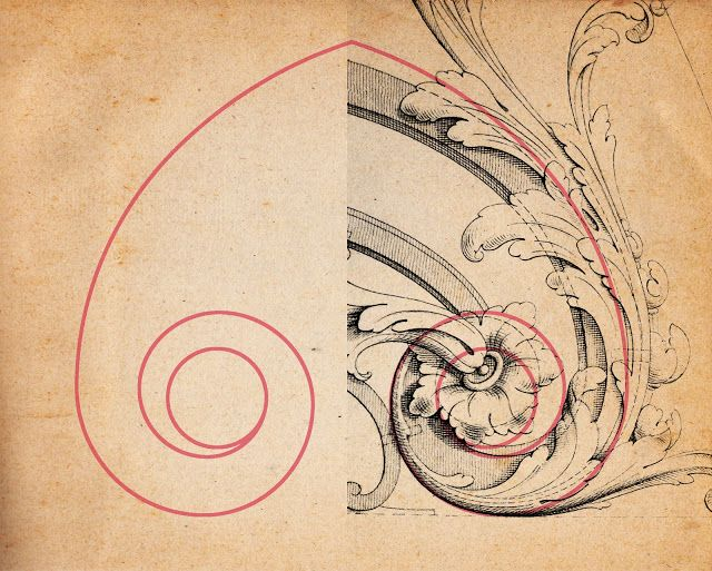 How to Draw a Volute, or Acanthus Scroll