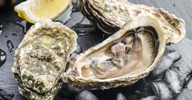 Comment ouvrir des huîtres sans couteau ?