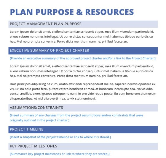 Free Download Basic ELearning Project Management Plan In Word
