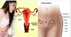 Pare de sofrer e elimine rapidamente a cólica menstrual com estes 2 tratamentos caseiros | Cura pela Natureza