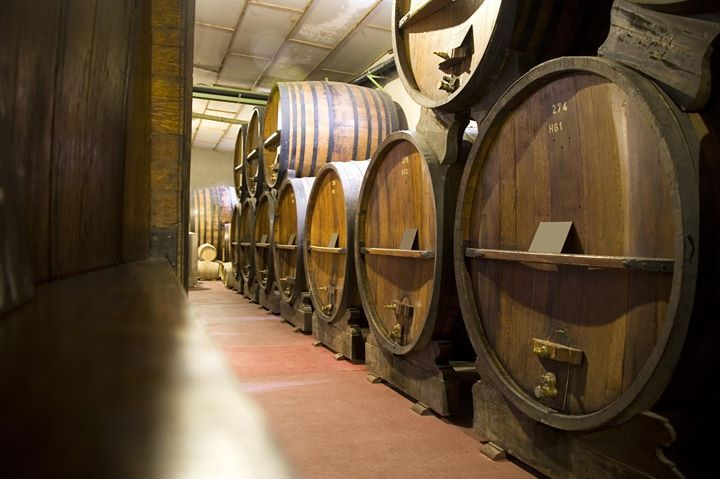 #Bodegas de #Mendoza ¿Cuál es tú vino preferido de Mendoza?- http://www.pixable.com/share/5Z4rN/?tracksrc=SHPNAND2&utm_medium=viral&utm_source=pinterest