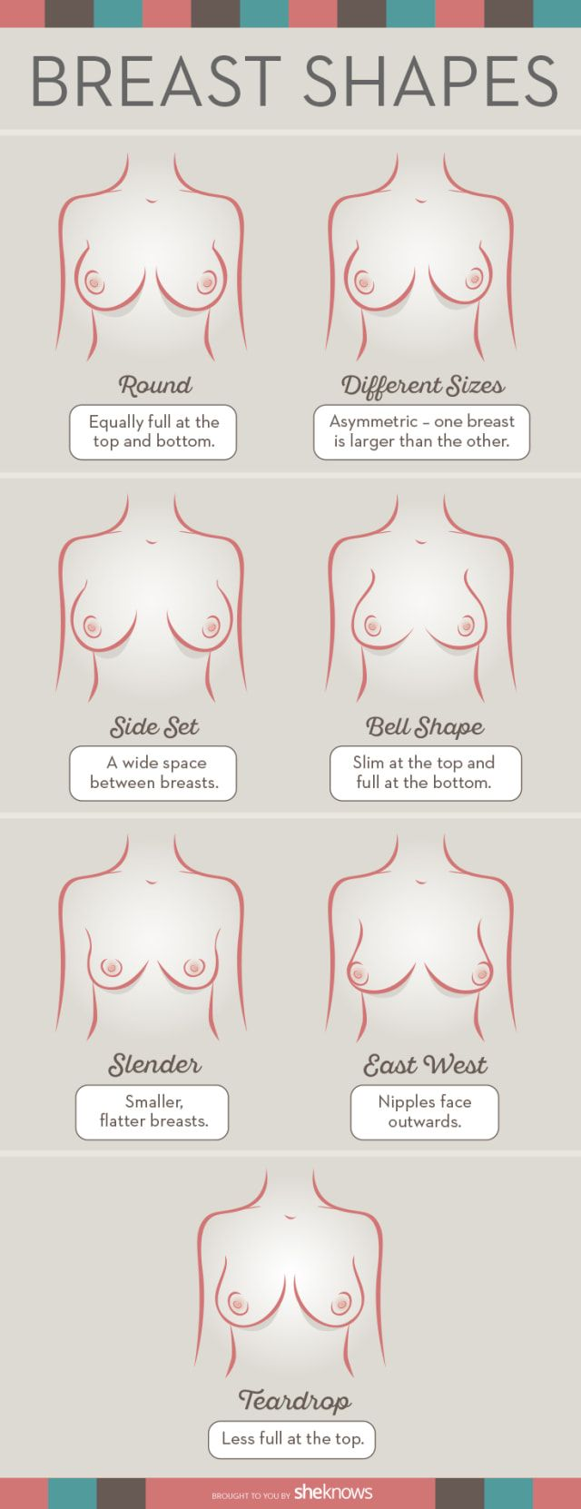 How To Determine Your Breast Shape To Find Your Perfect Bra! http://thecurvyfashionista.com/2016/08/how-to-determine-your-breast-shape-to-find-your-perfect-bra/