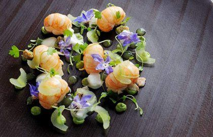 Recipe for Roasted Scotch Langoustines, Oyster Purée, Celery & Horseradish from Adam Simmonds - Great British Chefs