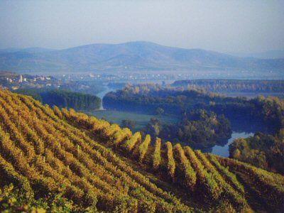 The Tokaj wine region of Hungary