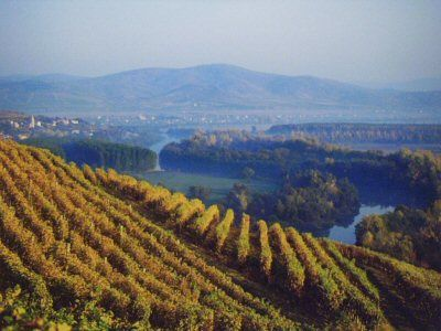 The Tokaj wine region of Hungary