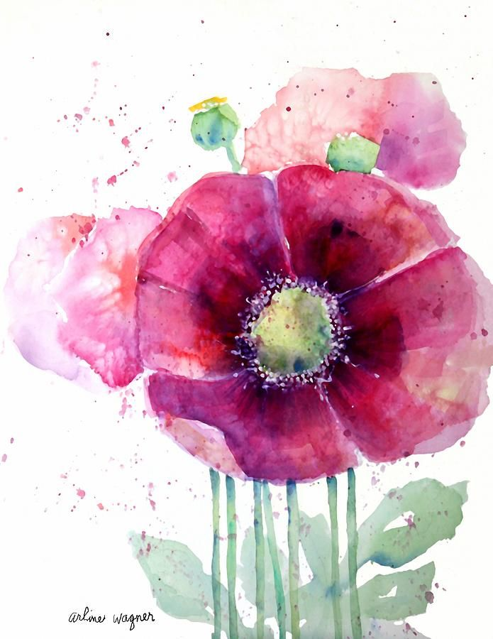 Pink Poppies Painting  - Pink Poppies Fine Art Print
