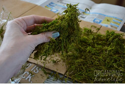 DIY Moss Table Runner.  But ill try it with felt for a more organic shape, and Mod Podge to make it more permanent.