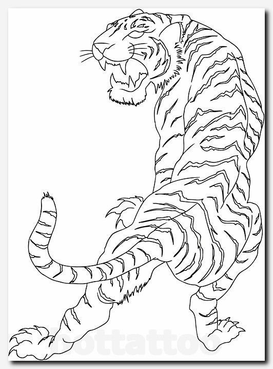 #tigertattoo #tattoo color tattoo cost, pegasus tribal tattoo, tattoo bull, purple flower tattoo, tattoo shops in charlotte nc, styles of lettering for tattoos, dove peace tattoo, small wing tattoos on back, tattoo & piercing shops near me, indian symbols and meanings for tattoos, ariel little mermaid tattoo, butterfly tattoos on side of body, feminine tattoo sleeve ideas, cute gemini tattoos, traditional swallow, mexican sun tattoo #tribalbacksidetattoos