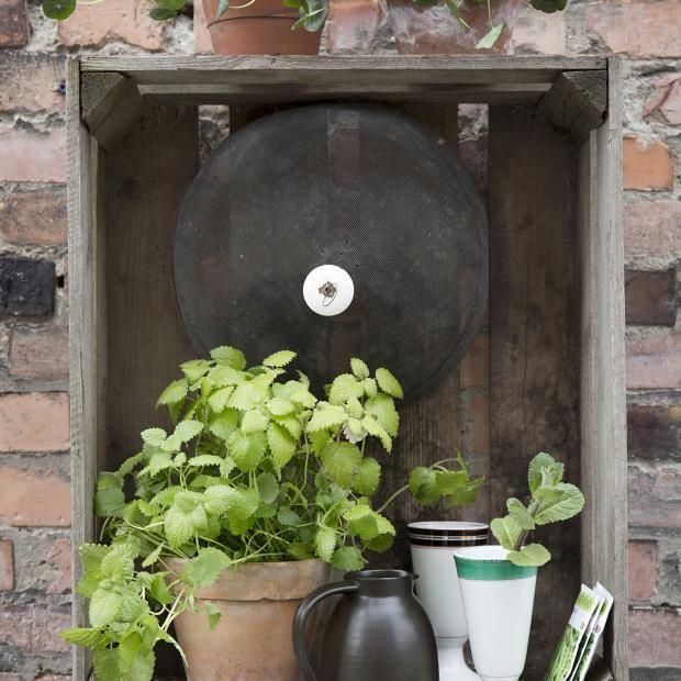 Terrasse, planter, murvegg
