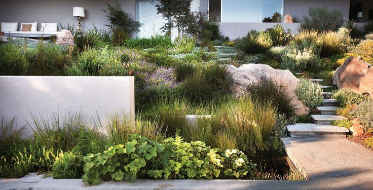 .Modern Gardens, House Design, Bridle Roads, Gardens Design Ideas, South Africa, Capes Town, Contemporary Gardens, Antonio Zaninovic, Landscapes