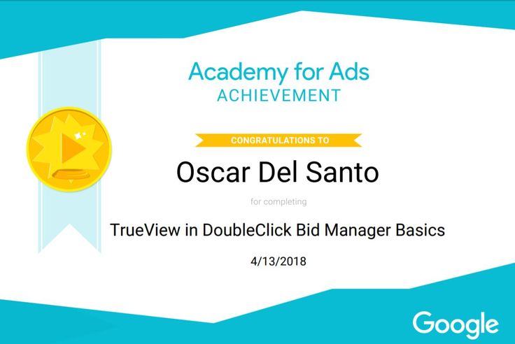 Google TrueView in Double Click Bid Manager Basics 13/04/2018