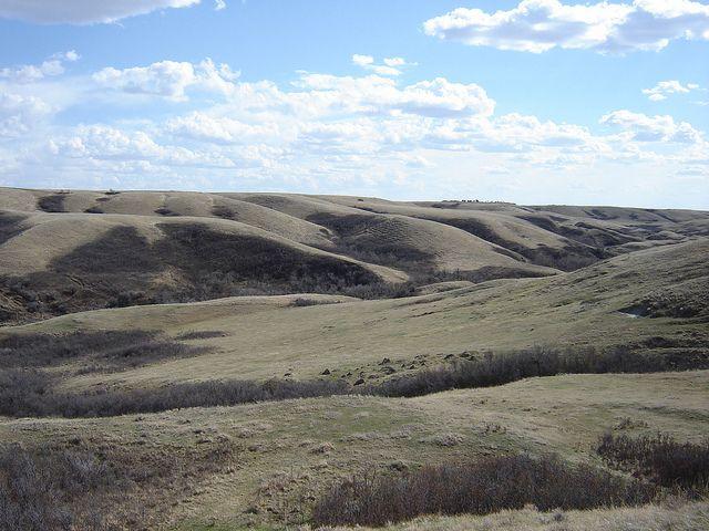 Saskatchewan native prairie by coast-to-coast, via Flickr