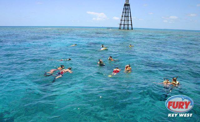 People snorkeling in Key West #keywest #snorkeling #furykeywest
