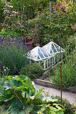 : Cloche Houses,  Nursery, Minis Greenhouses, Cases Terrarium,  Glasshous, Kitchens Gardens, Conservatoires Greenhouses, Small Greenhouses, Mini Greenhouse