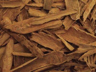 Saigon Cinnamon Health Benefits