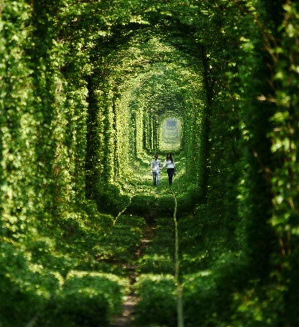 Tunnel of Love, Kleven, Ukraine: The result of nature growing freely around a train track. It is believed that if lovers walking through the tunnel are sincere in their love, their wishes will come true!  http://inhabitat.com/ukraines-tunnel-of-love-is-a-natural-passageway-for-trains-and-lovers/leafy-tunnel-of-love-in-ukraine-2/?extend=1