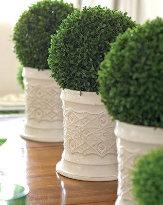 Boxwood topiaries -- perfect for St. Patrick's Day, even good for Easter. From Taste of the South Magazine.