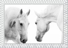 """Алмазная мозаика """"Белые лошади"""""""
