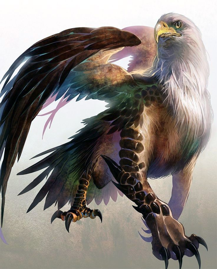 202 best images about legendary more mythical creatures on pinterest mythology digital art - A picture of a griffin the creature ...
