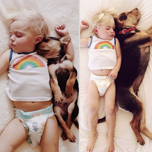 2 Months Later, This Toddler Is Still Napping With His Puppy Dog