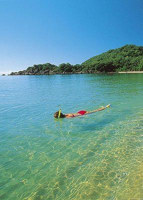 Snorkelling,Hinchinbrook Island National Park, Queensland, Australia
