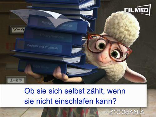 Zoomania Schaf