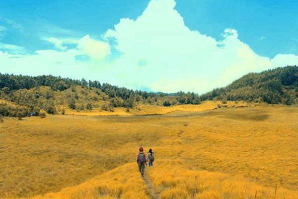 Hambaran Padang Rumput Yang Luas Dengan Landscape Pemandangan Pegunungan Yang Hijau Akan Memanjakan Siapa Saja Yang Mengunjungi Pada Di 2020 Pemandangan Liburan Rumput