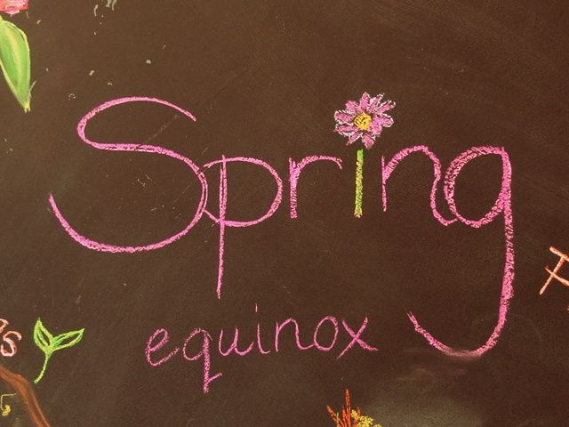 lessons about spring in Australia home education home school
