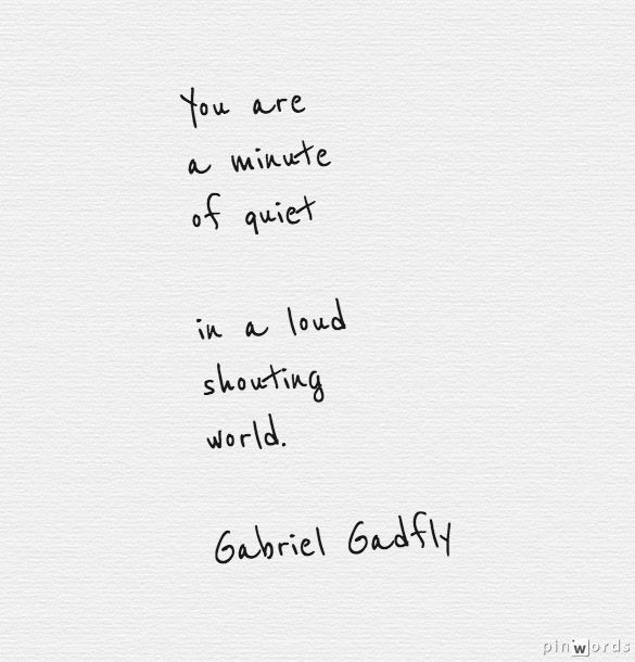 """""""You are a minute of quiet in a loud shouting world"""" -Gabriel Gadfly"""