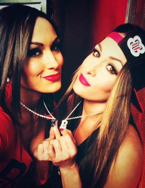 The Bella Twins (Brie and Nikki)