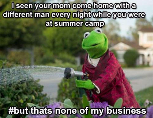 Kermit the frog    Somebody was busy. Lol.