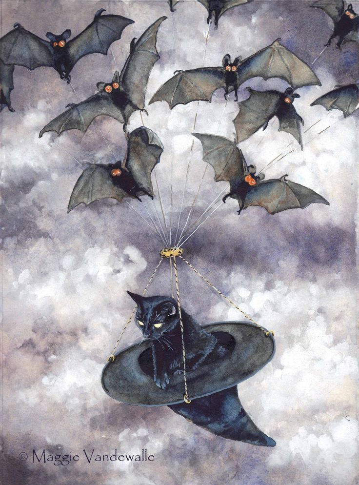 bats pulling a black cat in a witches hat what could be better than that - Halloween History Witches