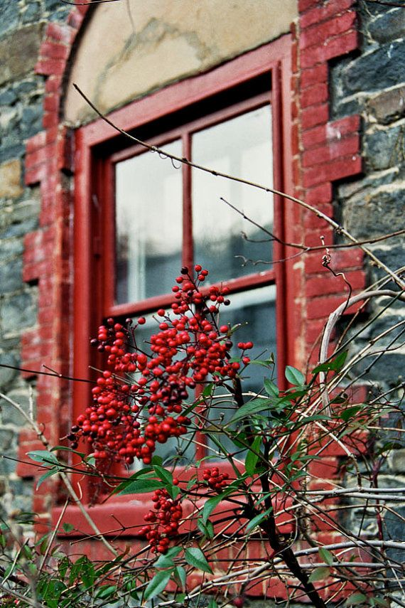 Rustic, quaint architectural detail - Still life photography- red, gray, green, stone house, fine art photograph - Red Window