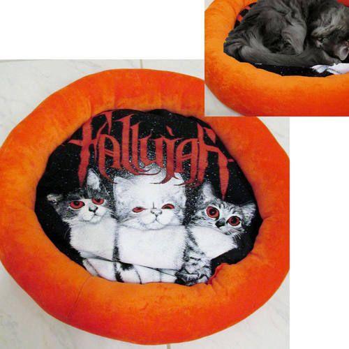 Fallujah Band Shirt Cat Bed DIY Death Metal