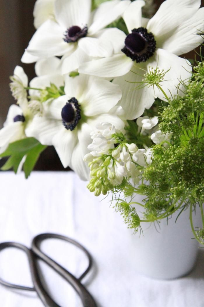 Bouquet of the Week: Splurge on Black and White Anemones: Remodelista