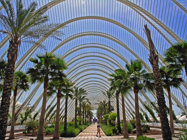 n Ciudad de las Artes y Ciencias, Valencia, Spain (2005)
