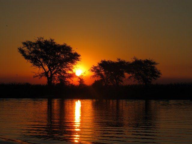 Safari Australe Ovest #2: dalle Cascate Vittoria al fiume Chobe