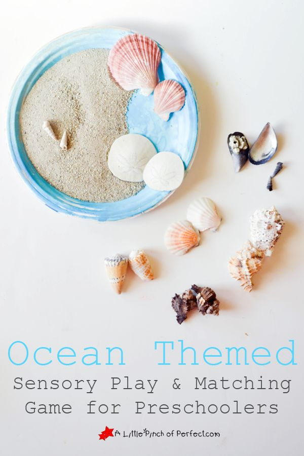 Ocean Sensory Play and Sea Shell Matching Game for Preschoolers