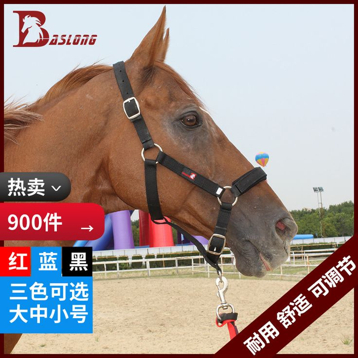 Équestre Cheval Cheval cage bride textile équipement menant chevaux