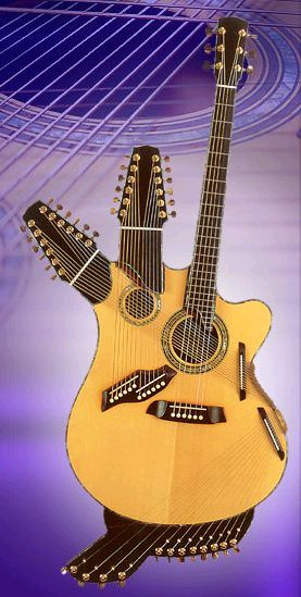 Pat Metheny's 42-string harp guitar, called a Pikasso guitar (I don't know why).