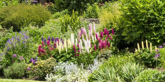 Venkovská zahrada u chalupy: aby vypadala jako ze starých časů