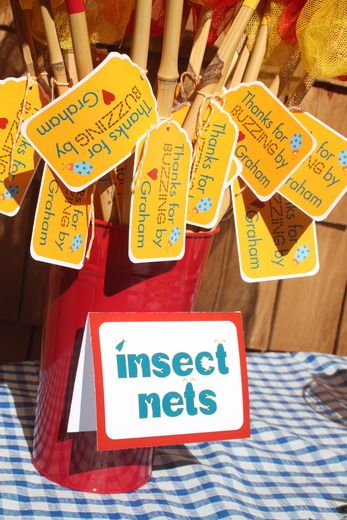 Bug Party Favors -- Net and a Ladybug mask (for girls) or Bee mask (for boys).