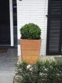 Hardhouten plantenbak met een buxus bol. Prachtige kleurencombinatie met het wit/zwarte huis.   Hardhouten plantenbakken zijn in verschillende modellen en maten verkrijgbaar in onze webshop http://www.hettuinleven.com/c-2129443-2/hardhout/