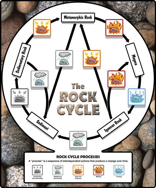 Medical Technology Cycle Bulletin Board Rock Cycle Bulletin Board Rock Cycle Poster Ideas Rock Cycle Game Rock Cycle Diagra In 2020 Erdkunde Experiment Lehner